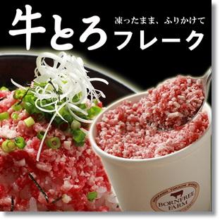 tokachi-gyutoroflake01