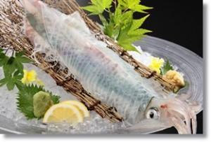 yamaguchi-senzakiika0214