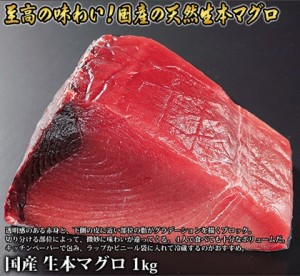 tennenmaguro-tukiji 0916